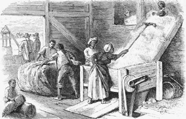 Slaves using a cotton gin