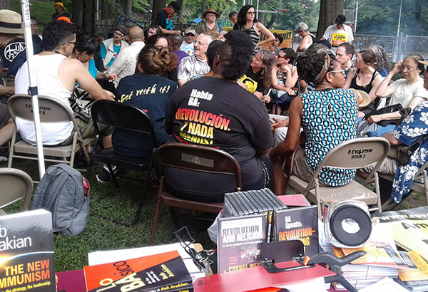 Discussion group at NYC picnic.